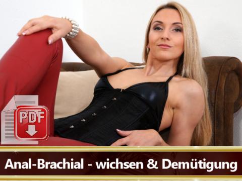 Wichsanleitung Anal Brachial