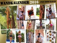 Online-Kalender 2016 PDF-Download