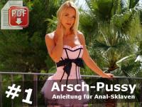 Arsch-Pussy Stufe 1