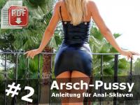 Arsch-Pussy Stufe 2