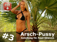 Arsch-Pussy Stufe 3