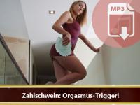 Audio ***: Zahlschwein Orgasmus Trigger