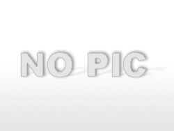 Cocktail - Losers Temptation