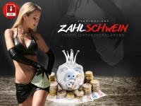 Zahlschwein-Vertrag - PayBitch auf Lebenszeit