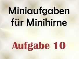 Miniaufgabe für Minihirne